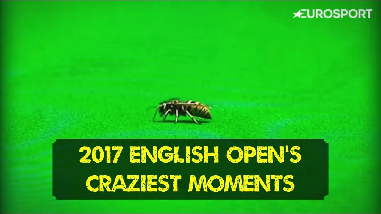 Fire, screams and an unlikely intruder | English Open 2017 Craziest Moments